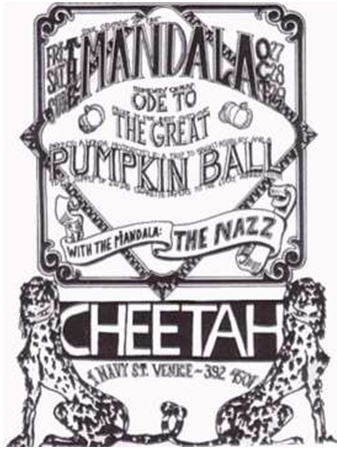 67october cheetah